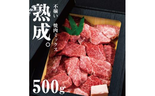 「山勇牛」焼肉用ミックス500g 牛肉 和牛 飛騨牛 肉