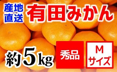 【産地直送】有田みかん 秀品 約5kg(Mサイズ)紀州グルメ市場