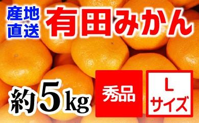 【産地直送】有田みかん 秀品 約5kg(Lサイズ)紀州グルメ市場