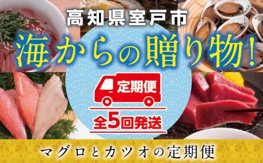 TK006海からの贈り物!マグロとカツオの定期便【5回お届け】