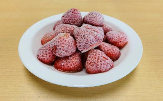 高設栽培いちご『紅カムイ』冷凍2kg 品種:信大BS8-9【08002】
