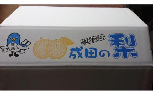 [№5904-0235]梨(幸水・豊水)