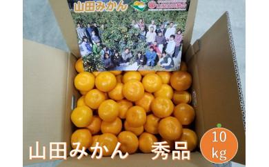 ■山田みかん 秀品10kgS/M/L