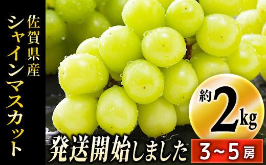 TKB5-018 佐賀県産シャインマスカット 約2kg(3〜5房)