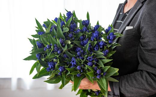 花束にして記念日の プレゼント としてもおすすめ。 花言葉 は「愛らしい」「誠実」