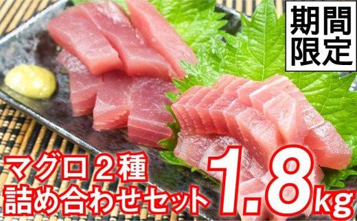 期間限定!!上質でさっぱりとした食感のキハダマグロとメバチマグロを大容量1.8kgでお届け!