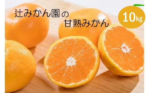 N-162 辻みかん園の甘熟みかん 10kg