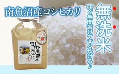 【令和2年度米】無洗米5kg 農家直送・南魚沼産コシヒカリ