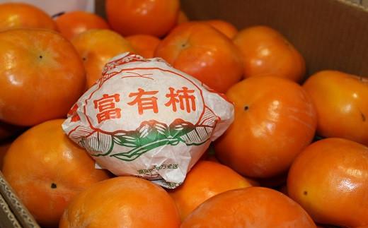 【0541】富有柿(A)