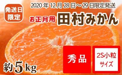 【12月28~29日発送】(お正月用)田村みかん 約5kg(小玉:2Sサイズ)