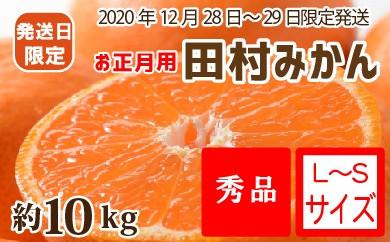 【12月28~29日発送】(お正月用)田村みかん 約10kg(S~Lサイズ)
