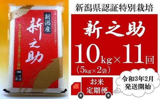 [U005]【定期便】新潟県認証特別栽培新之助(10kg×11回)
