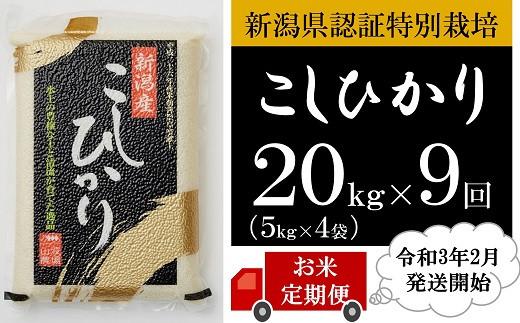 [U008]【定期便】新潟県認証特別栽培コシヒカリ(20kg×9回)