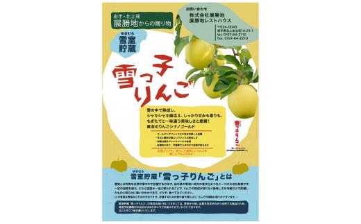 【先行予約/期間限定/2021年3月・4月発送】雪っ子りんご シナノゴールド  3kg
