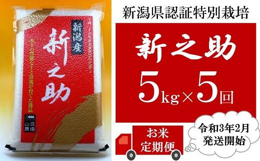 [D521]【定期便】新潟県認証特別栽培新之助(白米5kg×5回)