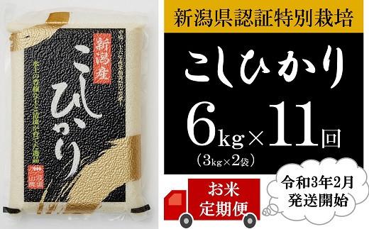 [E916]【定期便】新潟県認証特別栽培コシヒカリ(白米6kg×11回)