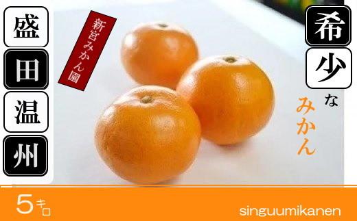 N-60 新宮みかん園 希少なみかん盛田温州 5kg