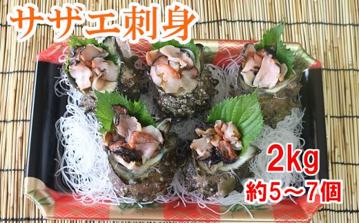 【生産者支援】届いてすぐに食べられる!サザエ刺身2kg(約5~7個)