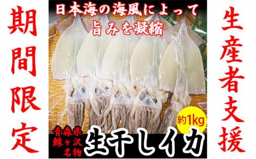 【生産者支援】【期間限定】鰺ヶ沢の生干しイカ 5枚セット