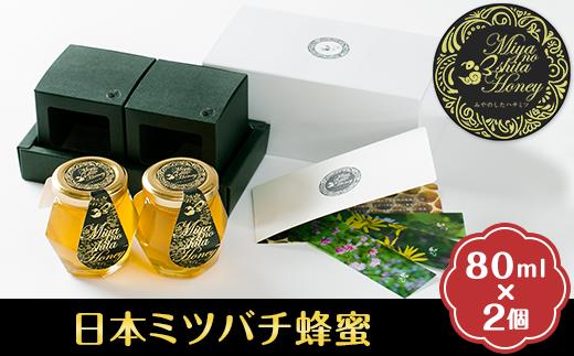 希少な天然日本ミツバチの「はちみつ」