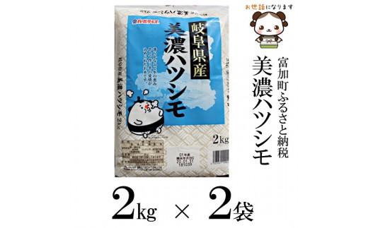 【8026】美濃ハツシモ4kg 令和元年度産