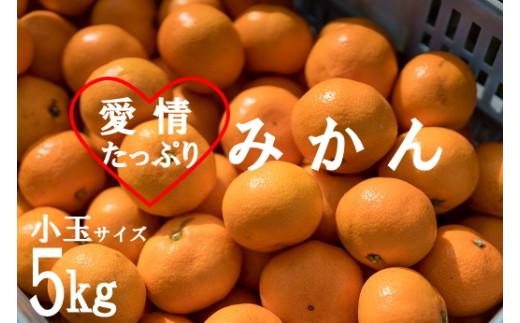 愛情たっぷりたらみかん(小玉)5kg