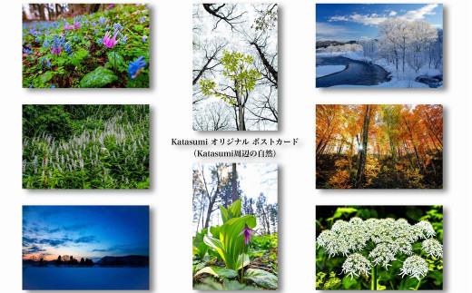 「Katasumi」オーナー撮影 ポストカードセット① 沢内長瀬野の風景