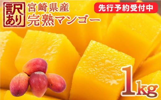 <先行予約>[訳アリ]完熟マンゴー《家庭用》1kg 【A178】