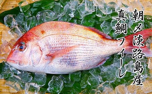 淡路島 朝締め 真鯛フィーレ(冷蔵)