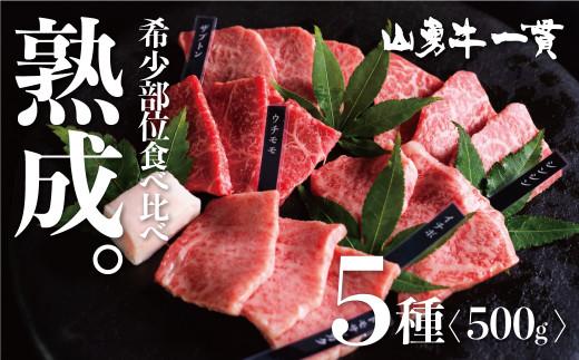 飛騨牛 焼肉 熟成肉『山勇牛』 牛肉 和牛 おまかせ5種盛合せ30日以上熟成