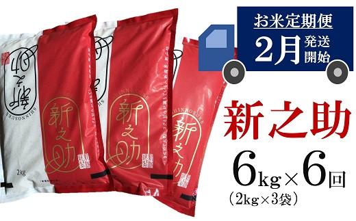 [H611]【五ツ星お米マイスター厳選の定期便】新之助 白米(6㎏×6回)