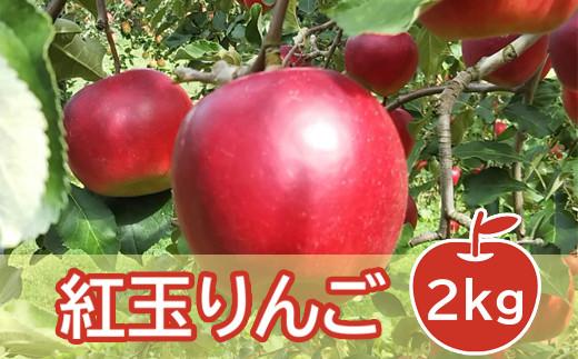 【限定50個】《10月上旬~お届け》りんご(紅玉) 計2kg 9~12玉<オンライン決済限定>