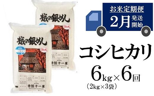 [H604]【五ツ星お米マイスター厳選の定期便】コシヒカリ 白米 (6kg×6回)