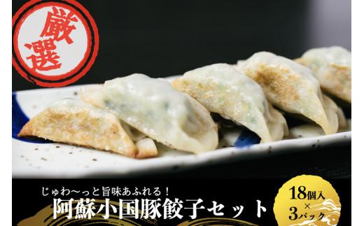 <じゅわ~っと旨み溢れる>阿蘇小国豚餃子54個セット