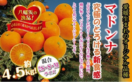 C39-31.ぷるぷる新食感!!「マドンナ」約4.5kg