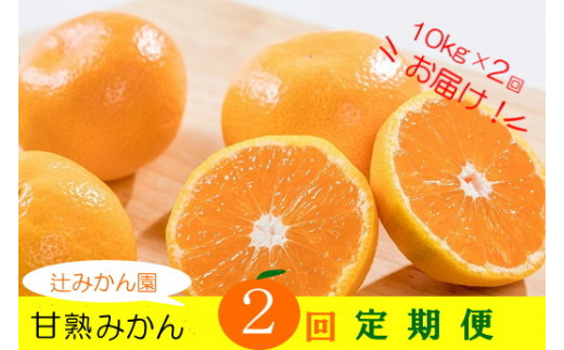 辻みかん園の甘熟みかん 2回定期便