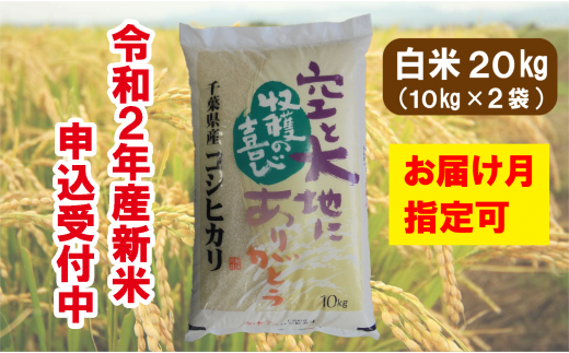 I01-700 長生産コシヒカリ(白米20kg)令和2年産新米 ※配送月指定可
