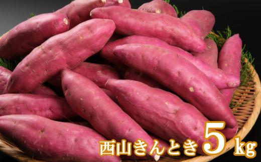 TA023【秀品】西山きんとき芋5kg