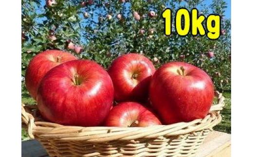 築城果樹園のりんご 10kg詰合せ