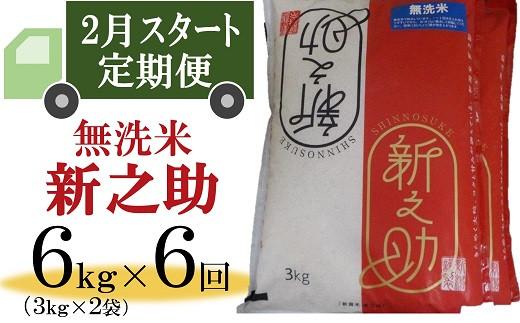 [H610]【定期便】柏崎産 新之助 無洗米(6㎏×6回)