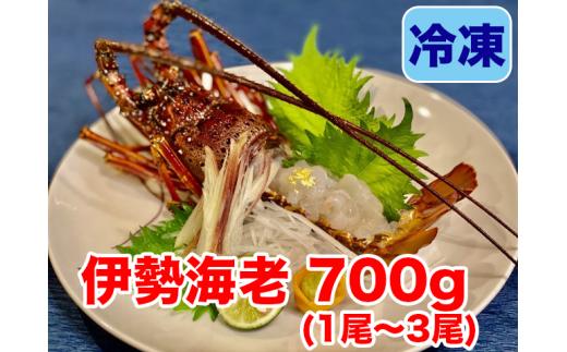 【職人吉岡】冷凍伊勢海老700g!!(1尾から3尾)