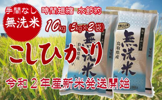 Z4001.【無洗米】コシヒカリ手間なし6回定期便