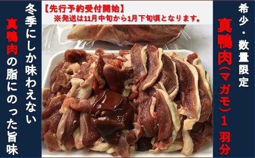 【先行予約・数量限定】真鴨肉1羽分 約550g