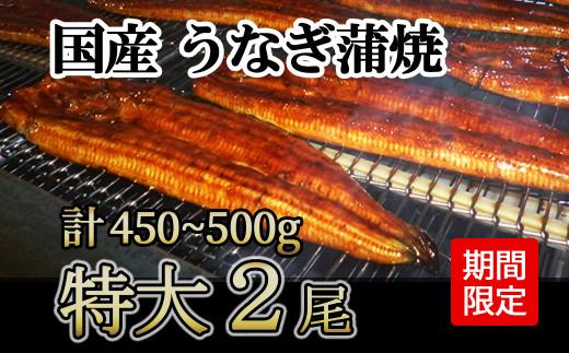 1226.【期間限定】国産うなぎの蒲焼き 特大2尾450~500g ニコニコエール品