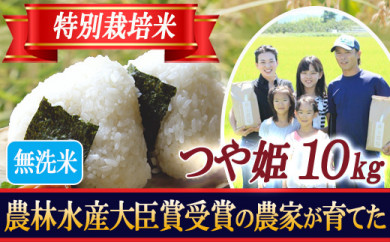 BL23 【無洗米】特別栽培米 つや姫 精米2kg×5袋 山形県庄内産 令和2年産