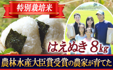 BL24 【特別栽培米】はえぬき 精米2kg×4袋 山形県庄内 令和2年産