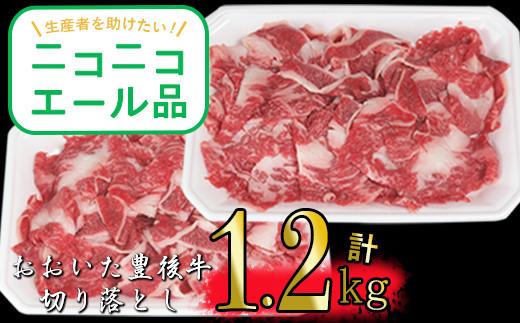 【ニコニコエール品】豊後牛切り落とし1.2kg(600g×2p)※期間限定 緊急支援品<27-A0219>