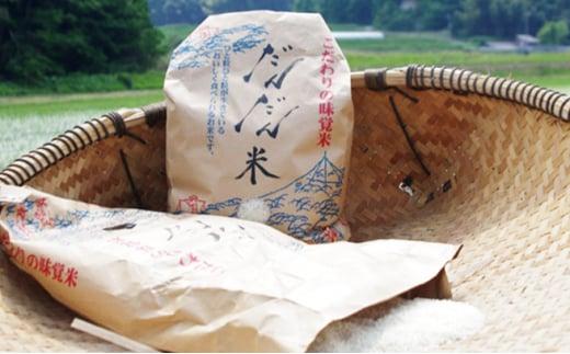 [№5667-0261]日南町笠木産 コシヒカリ 10kg