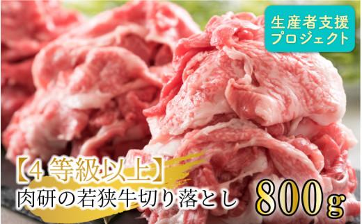 肉研の若狭牛切り落とし 800g 【4等級以上】【ニコニコエール品】 [A-10005]