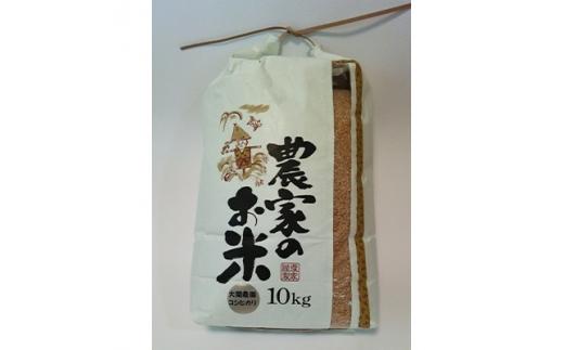 土浦市産 コシヒカリ玄米 10kg【1125497】